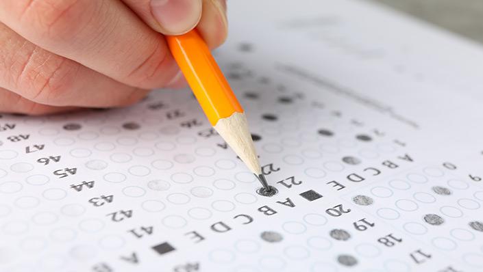 11 plus examination